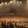 publikumsbild-2014
